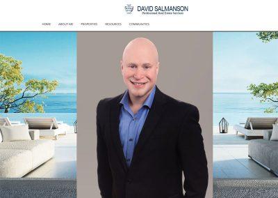 David Salmanson – Real Estate Agent Website