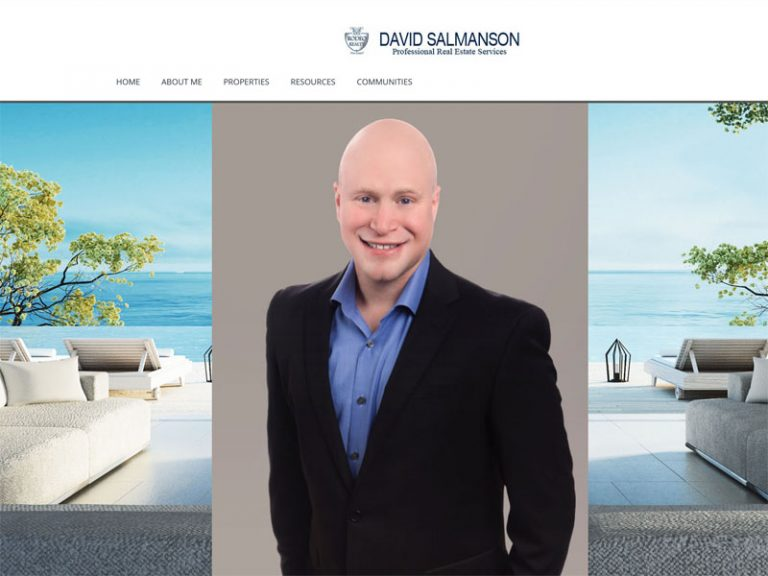 David Salmanson – Real Estate Agent Website